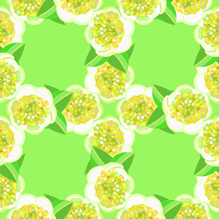 seamless pattern with tea bush Camellia Chinese on a green background vector illustration