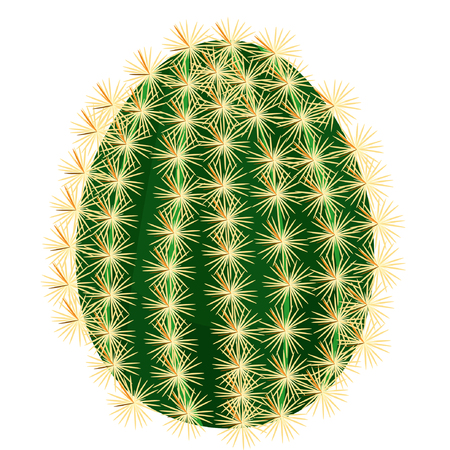 flowers close up: cactus without flowers close up vector illustration