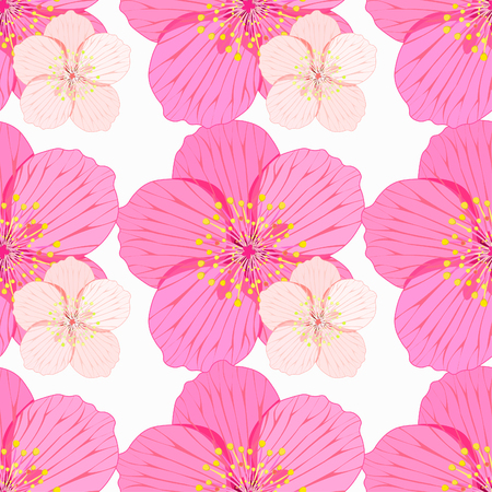 stamens: seamless pattern Sakura is couple flower on a white background vector illustration