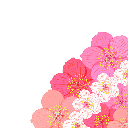 postcard corner with flowers of Japanese of cherries vector illustration