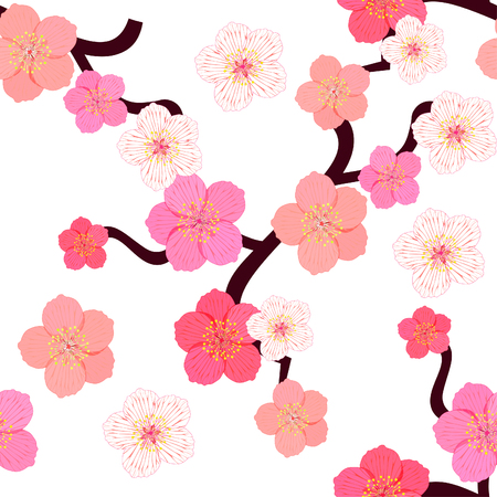 stamen: seamless pattern with flowers of Japanese of cherries vector illustration