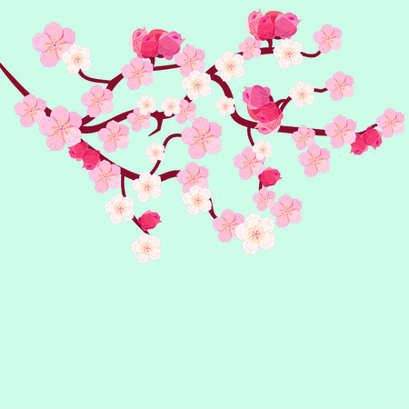 stamen: postcard branches of Japanese of the cherry blossoms with buds vector illustration Illustration