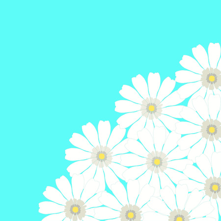 Greeting card with camomile on a blue background vector illustration