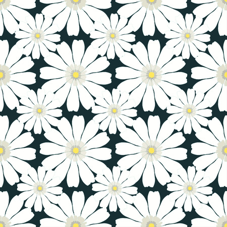 daisy wheel: Seamless pattern with camomile on dark background vector illustration Illustration