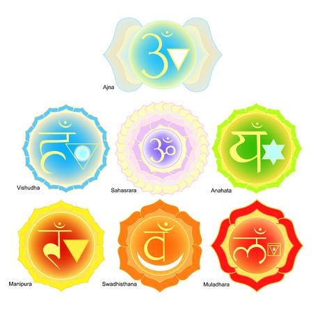 chakra: Indian chakra  a color set. vector illustration