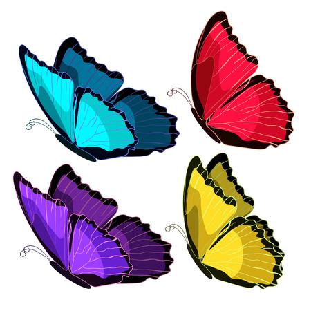 morpho: set blue morpho the butterfly monarch color . vector illustration