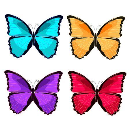 morpho: set blue morpho the butterfly monarch.  vector illustration Illustration