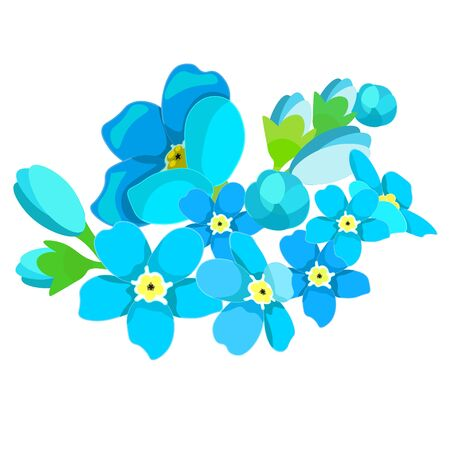 card of forget-me-alpine  wild flower . vector illustration