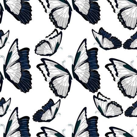 morpho: seamless pattern  morpho butterfliese butterfly monarch black and white . vector illustration