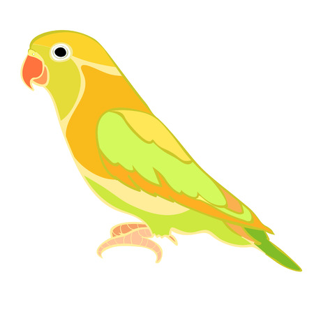 Lovebirds papegaai met een rode snavel vector illustratie