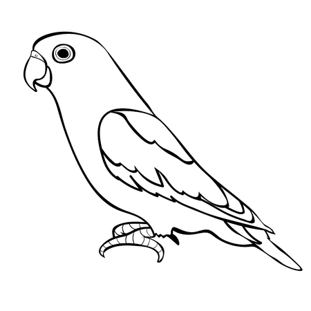 lovebirds parrot with a red beak coloring  vector illustration