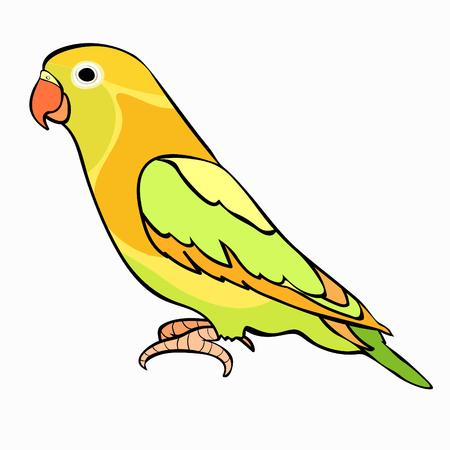 Liefdevogels Papegaai Met Rode Vlek Vectorillustratie
