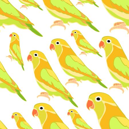 lovebirds: seamless pattern lovebirds parrot with a red beak  vector illustration