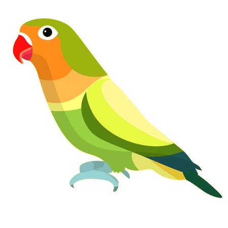 lovebirds parrot with  red beak  vector illustration