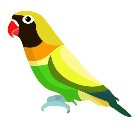 lovebirds parrot with a red beak black head  vector illustration Illustration