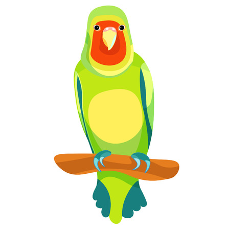 lovebird: lovebird parrot sits right with a red head vector illustration
