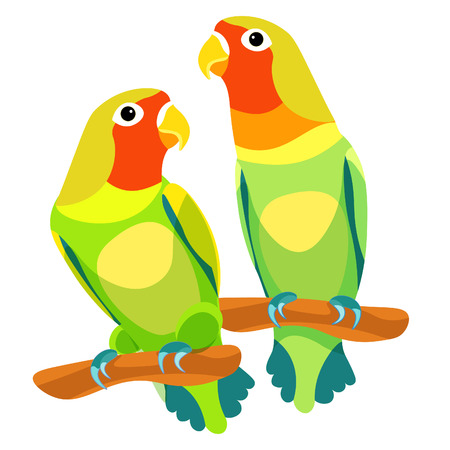 lovebirds parrot couple with a red head. vector illustration