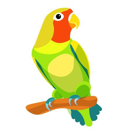 papegaai dwergpapegaai zitten draaide rood hoofd. vector illustratie