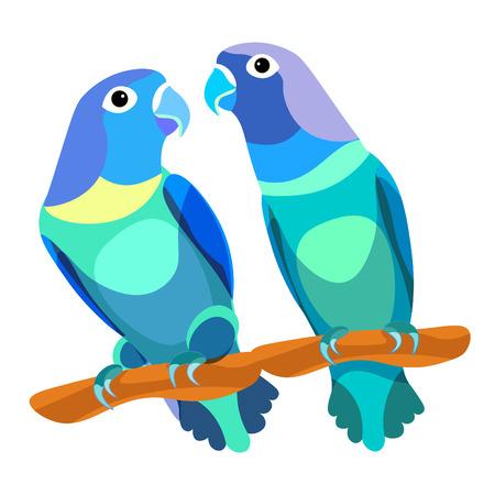parrot lovebirds couple sitting head turned blue  vector illustration