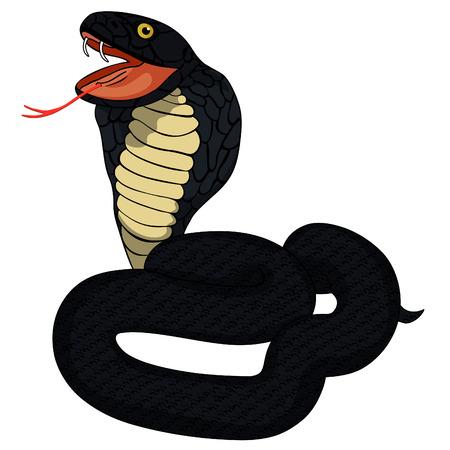 king cobra: Black  king cobra with fangs vector illustration Illustration