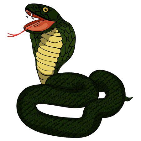 dark green king cobra with fangs vector illustration Illustration