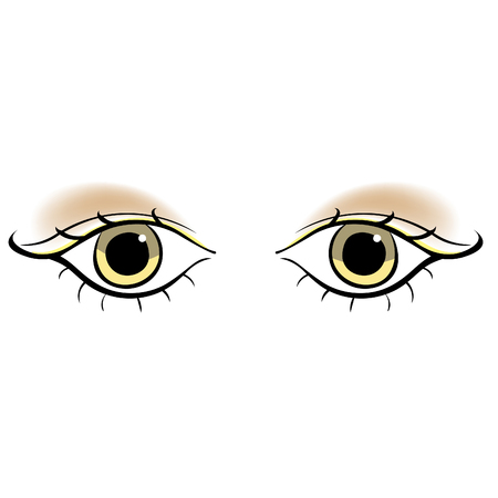 Eyes young women look forward silhouette with brown makeup. vector illustration