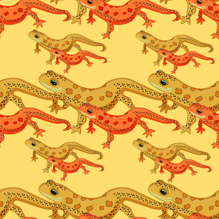 Seamless pattern Triton East American red spotted salamanders . vector illustration Illustration