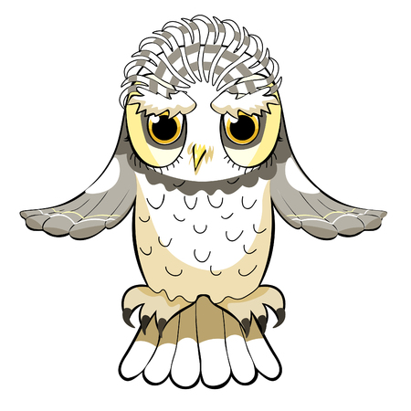 howlet bird with a raised wings  vector illustration Illustration