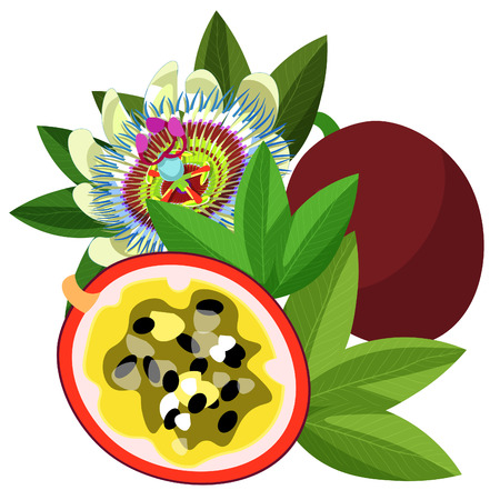 Passion flower Blue fruit maracuya.