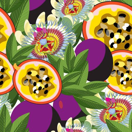 Pattern passion flower Blue fruits maracuya illustration.