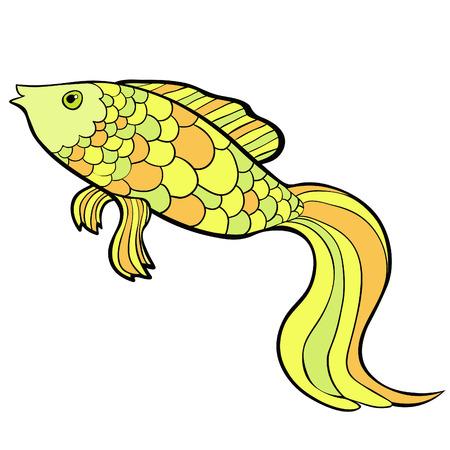 fish cartoon a gold cute . Vector illustration