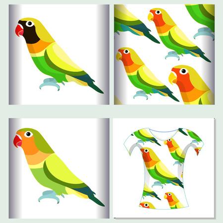 Instellen voor t-shirt ontwerp naadloze patroon dwergpapegaaien van papegaai vectorillustratie Vector Illustratie