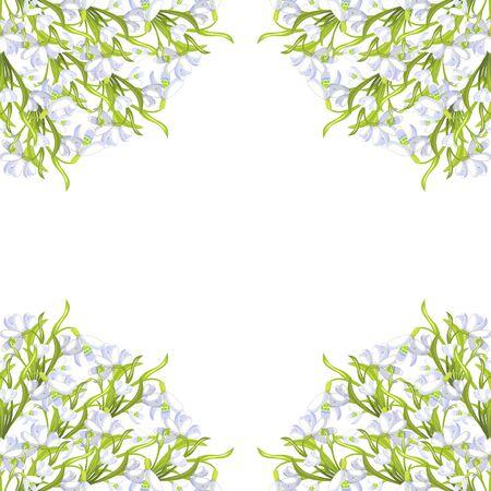 Rahmen Ecke Schneeglöckchen Blume blühte mit Blättern Vektor-Illustration Vektorgrafik