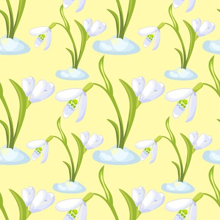 Seamless pattern snowdrop flower blossomed with leave Vector illustration Illustration