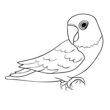 Coloring Masked Lovebird een blauwe papegaai vector illustratie