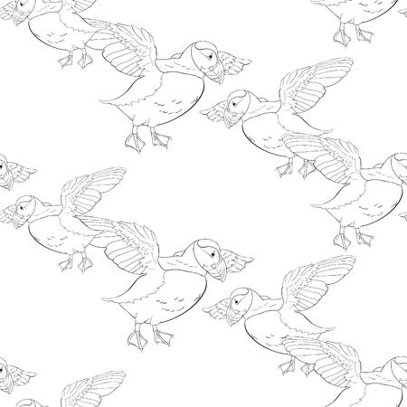 coloring seamless pattern Bird deadlock Australian Atlantic in flight  Vector illustration