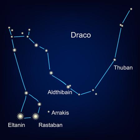 Constellations of the dragon horoscope stars  illustration.