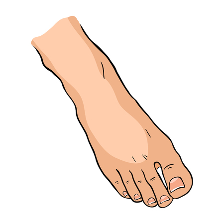 a male foot from above vector illustration