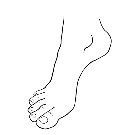 foot soles of the male down on tiptoe. vector illustration Illustration