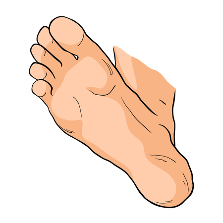 the foot male up sole vector illustration