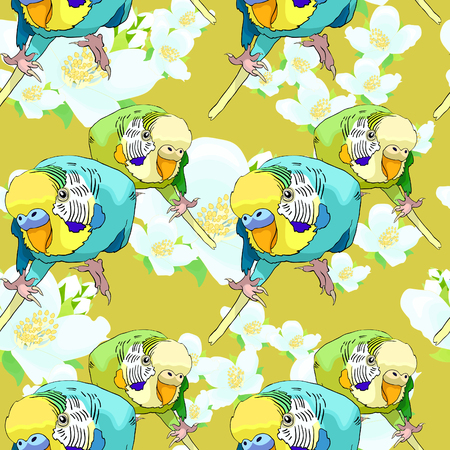 seamless pattern Yellow face blue wavy parrot on jasmine flower. Vector illustration