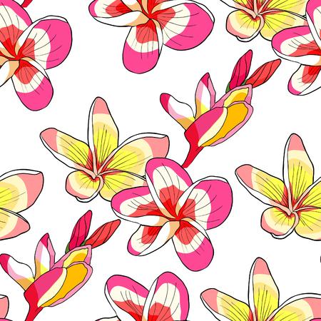seamless pattern Hawaiian plumeria flower an exotic . vector illustration