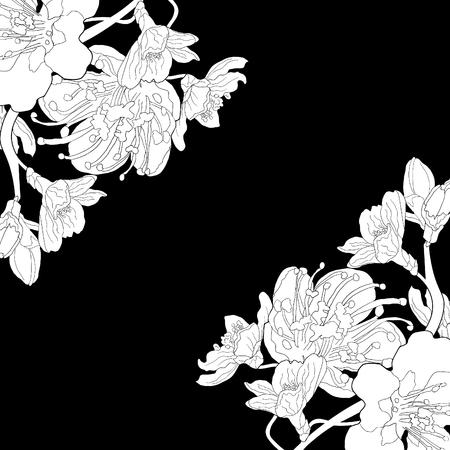 Bloem van de amandel bloeit een noot. vector illustratie