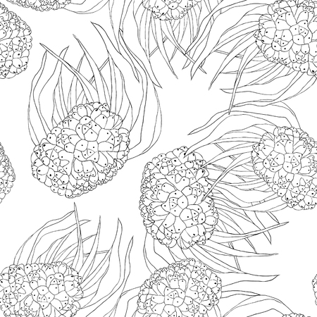 Coloring seamless pattern pandan fruit of Thailand vector illustration Illustration