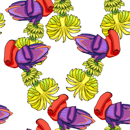 The seamless pattern banana flower India exotica vector illustration Illustration