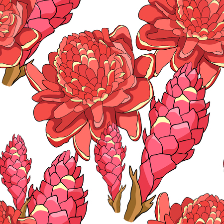 seamless pattern Tropical flower of ginger Red torch  vector illustration