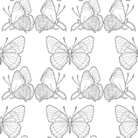 カラーリングシームレスパターンディアエトリアクリメナバタフライベクトルイラスト
