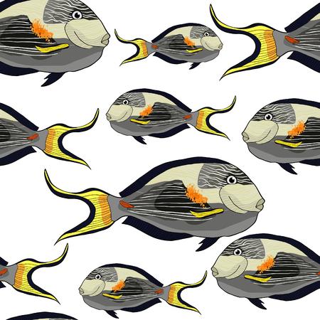 seamless pattern  Arabian surgeon Sohail fish  vector illustration