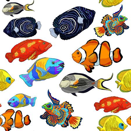 seamless pattern red sea fish Arabian surgeon Sohail, Mandarin, Fish  parrot.  vector illustration Ilustrace