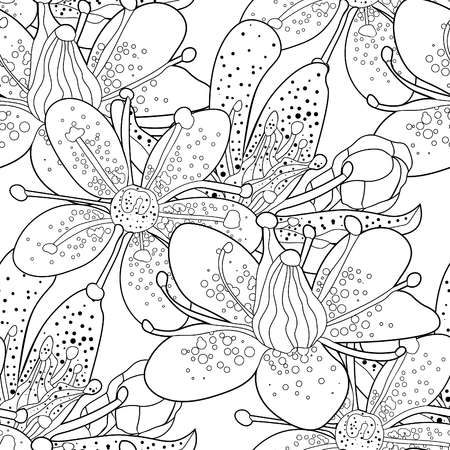 seamless pattern  coloring flower of the Saxifrage urbrosa  vector illustration